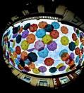 Imagen de los paraguas de la calle Madrid, de Lucía Aguado